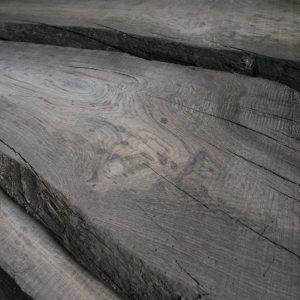 Мореный дуб в Минске
