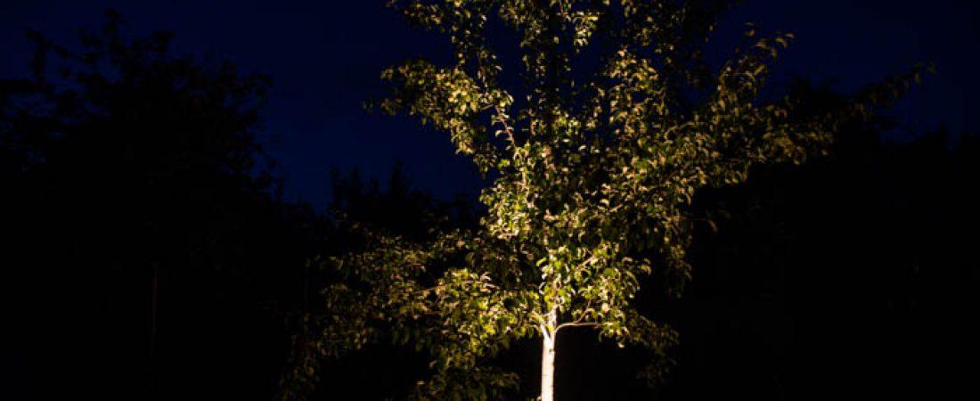 Декоративная подсветка сада и участка